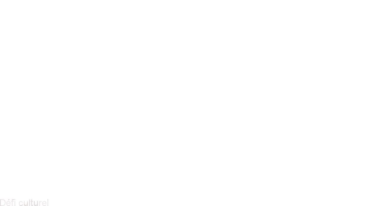 Défi culturel